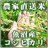 魚沼産コシヒカリ販売 うおぬま産厳選市場