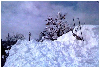 雪下ろし01