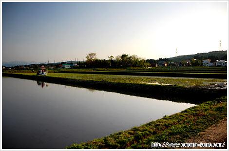 20100521_04.jpg